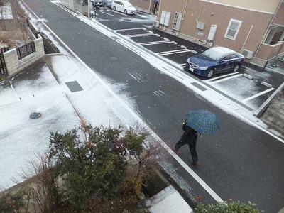 snow1679.jpg
