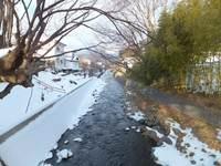 14yadesawa2132.jpg