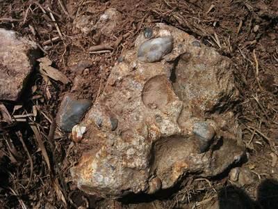 礫岩.jpg