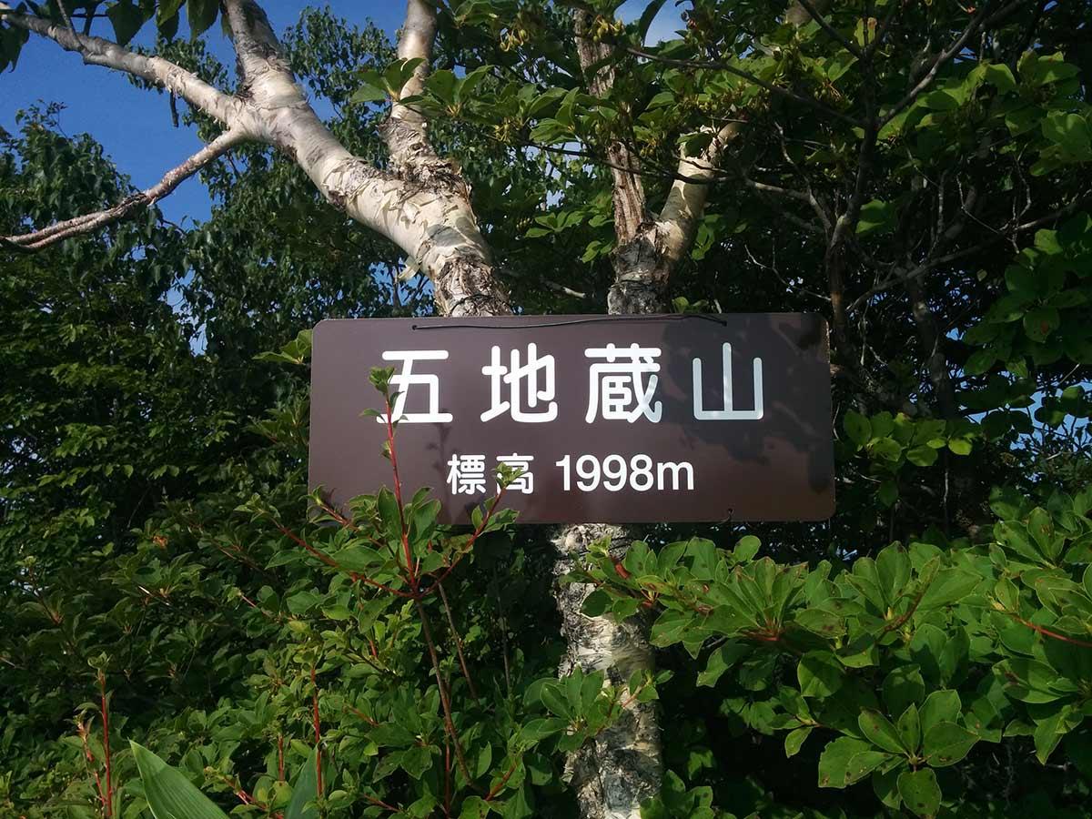 http://blog.murachan2003.com/images/%E4%BA%94%E5%9C%B0%E8%94%B5%E5%B1%B1.jpg