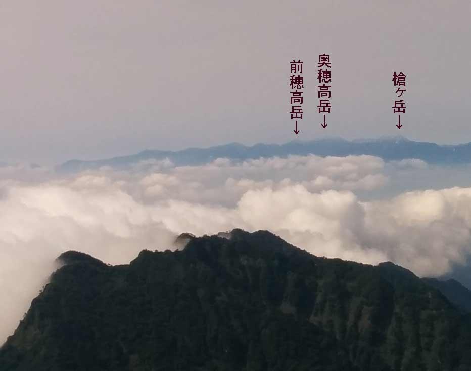 http://blog.murachan2003.com/images/%E6%A7%8D%E7%A9%82.jpg