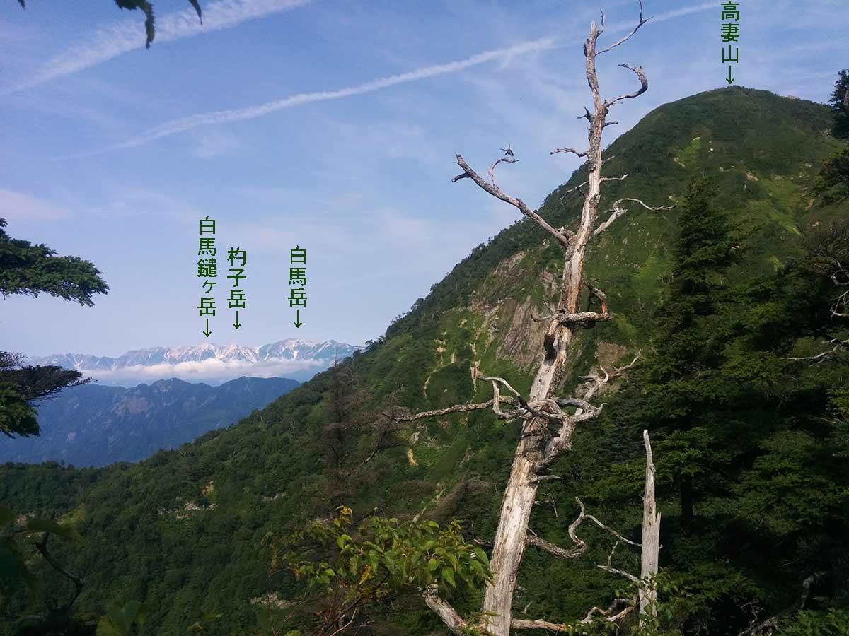 http://blog.murachan2003.com/images/%E7%99%BD%E9%A6%AC%E5%B2%B3%E3%81%A8%E9%AB%98%E5%A6%BB%E5%B1%B1.jpg