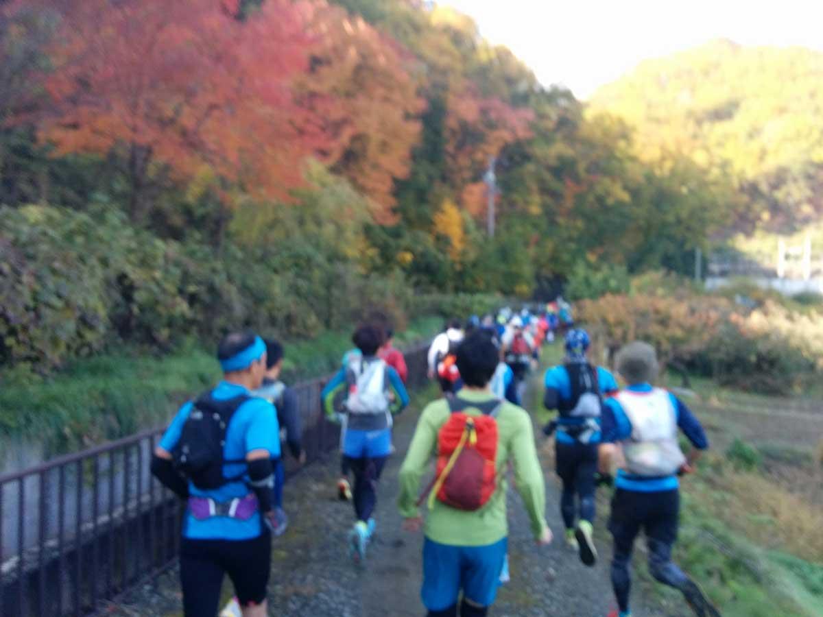 http://blog.murachan2003.com/images/1112kouyou.jpg